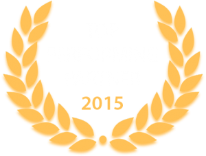 SAP Business One partner of the year 2015