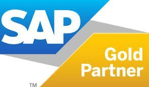 SAP Business One Partner Support Checklist