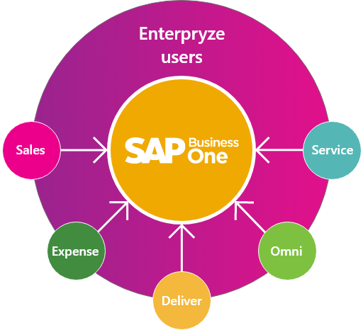 How does Enterpryze for SAP Business One work?